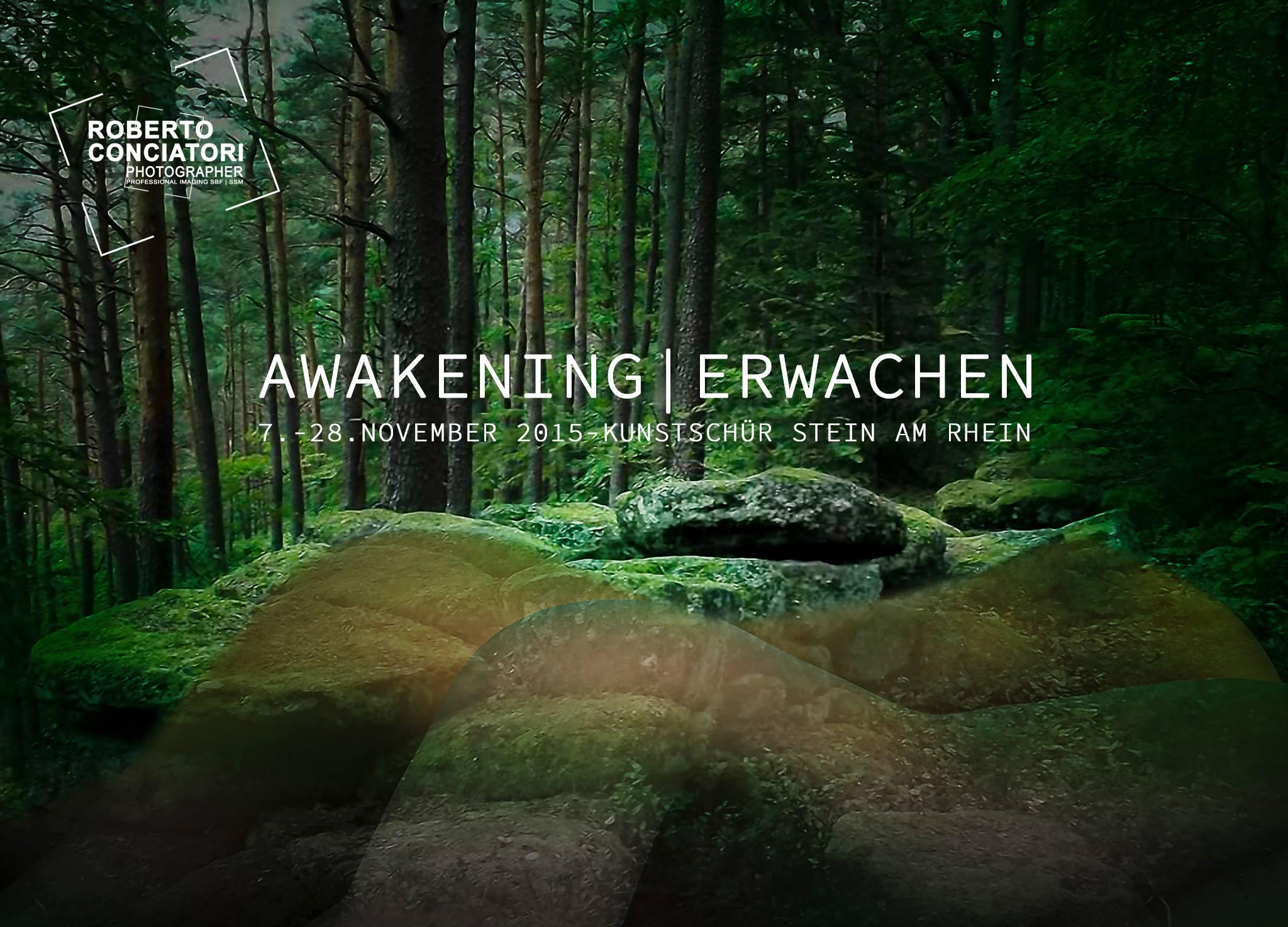 AWAKENING | ERWACHEN